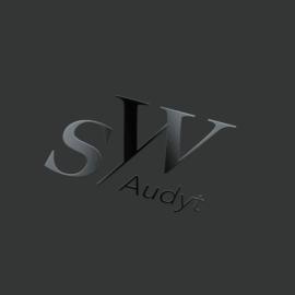 sw audyt logo portfolio